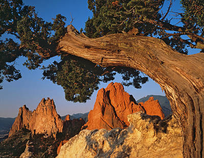 Hogback Photograph - Garden Of The Gods by Dennis Flaherty