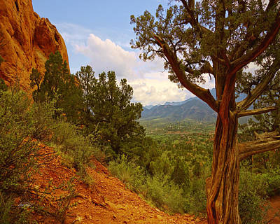 Photograph - Garden Of The Gods Six by Ann Powell