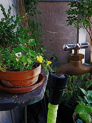 Garden On The Flatiron Patio Art Print