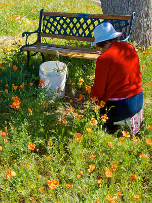 Garden Party In Park Sierra-ca Art Print by Ruth Hager