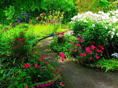 Photograph - Garden Path by Derek Dean