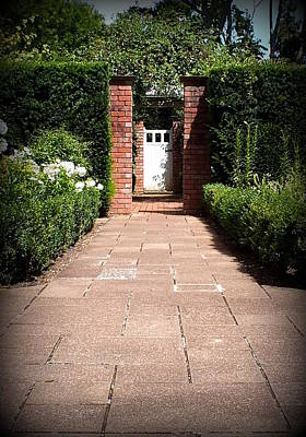 Photograph - Garden Path by Guy Pettingell