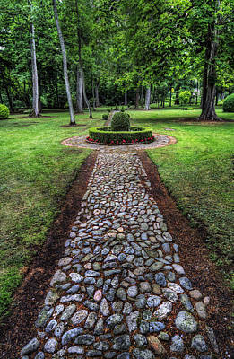 Photograph - Garden Path by Ian Mitchell
