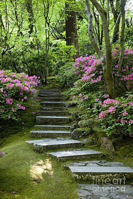 Photograph - Garden Pathway by Brian Jannsen