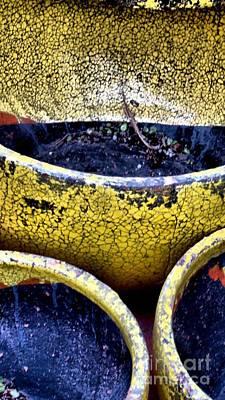 Photograph - Garden Pots by Claudette Bujold-Poirier