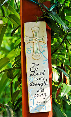 Photograph - Garden Prayer by Ginger Wakem