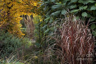 Garden Room With Golden Portal Art Print