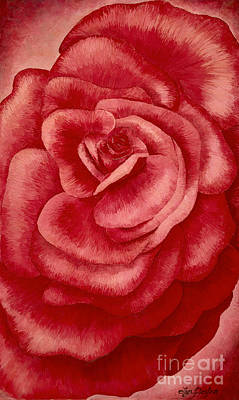 Painting - Garden Rose by Lyn Pacificar