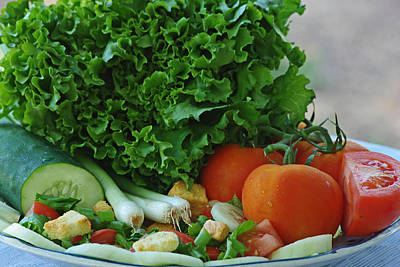 Photograph - Garden Salad by Robyn Stacey