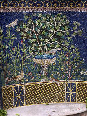 Photograph - Garden Seat Mosaic by Brenda Kean