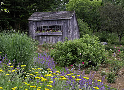 Photograph - Garden Shed by David Freuthal