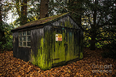 Photograph - Garden Shed by David Warrington