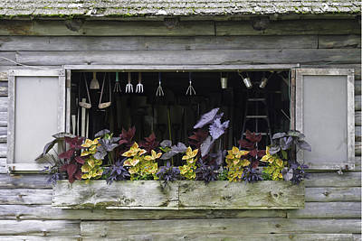 Photograph - Garden Shed Window by David Freuthal