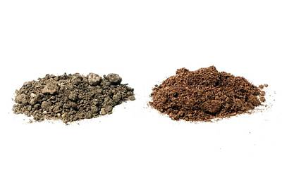 Impact Photograph - Garden Soil And Peat-based Compost by Dr Jeremy Burgess