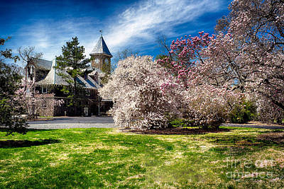 Duke Gardens Photograph - Garden State Spring Impression I by George Oze