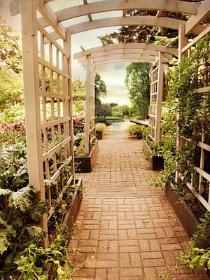 Walkway Digital Art - Garden Trellis View by Jessica Jenney