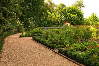 Photograph - Garden Walk At Mount Vernon by Paul Mangold