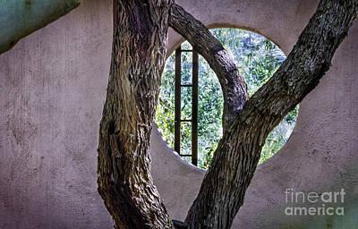 Digital Art - Garden Wall by Georgianne Giese