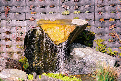 Photograph - Garden Wall by Tikvah's Hope
