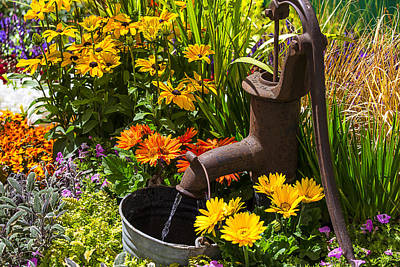 Bucket Photograph - Garden Water Pump by Garry Gay