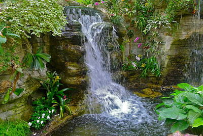 Photograph - Garden Waterfall by Denise Mazzocco