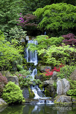 Photograph - Garden Waterfalls by Brian Jannsen
