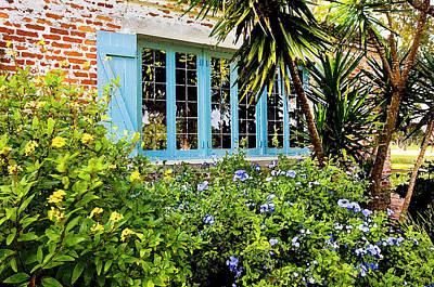 Garden Window Db Art Print by Rich Franco