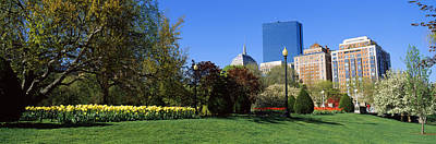 Boston Public Garden Photograph - Garden With Skyscrapers by Panoramic Images
