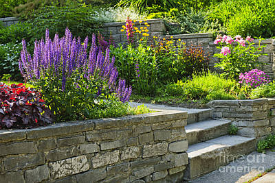 Stairway Photograph - Garden With Stone Landscaping by Elena Elisseeva