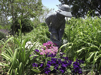 Photograph - Gardener by Ram Vasudev