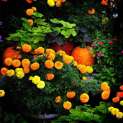 Photograph - Gardener's Pride by Randi Grace Nilsberg