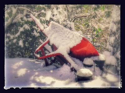 Photograph - Gardener's Winter Dream by Nicole Angell