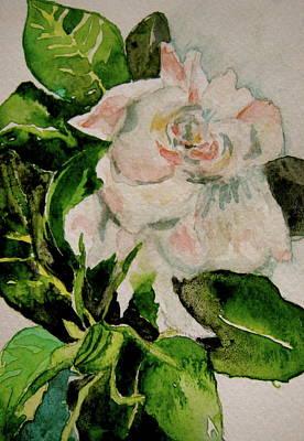 Gardenia 1 Original