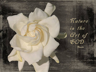 Gardenia And Quote Art Print by Rosalie Scanlon