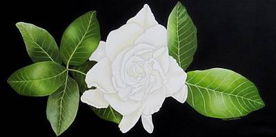 Gardenia Flower Original