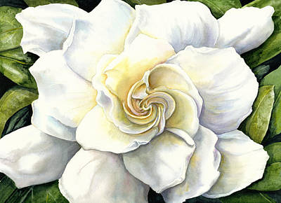 White Flowers Painting - Gardenia by Karen Wright