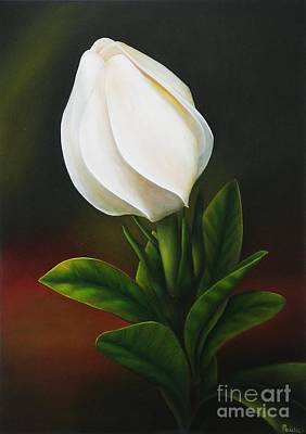 Art Print featuring the painting Gardenia by Paula L