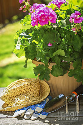 Still Life Royalty-Free and Rights-Managed Images - Gardening by Elena Elisseeva