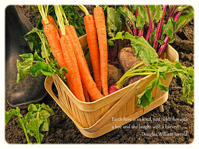 Carrot Wall Art - Photograph - Gardening Quote by Edward Fielding