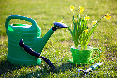 Growth Photograph - Gardening Tools And Flowers by Michal Bednarek
