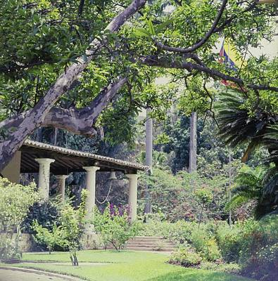 Photograph - Gardens At Hacienda La Vega by Horst P. Horst