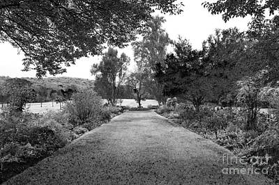 Photograph - Gardens At The Skylands by John Rizzuto