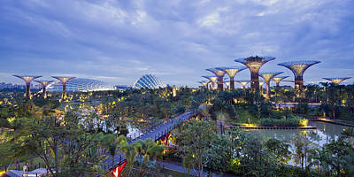 Photograph - Gardens By The Bay by Ng Hock How
