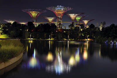 Gardens By The Bay Supertree Grove Art Print by David Gn