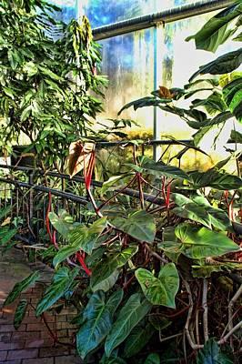 Gardens Art Print