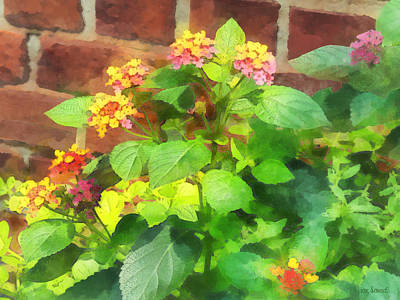 Photograph - Gardens - Lantana Against Brick Wall by Susan Savad