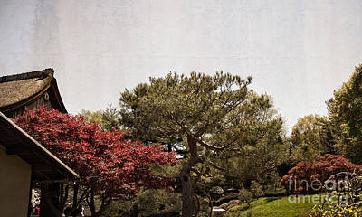 Gardens Of A Japanese Tea House Print by Tom Gari Gallery-Three-Photography