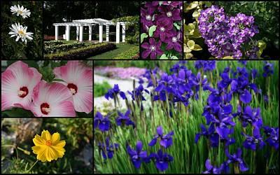 Photograph - Gardens Of Beauty by Kay Novy