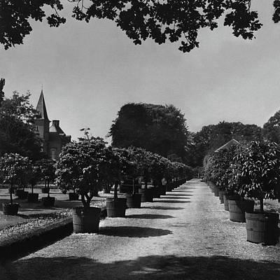 Castle Photograph - Gardens Of Twickel Castle by Constantin Joffe