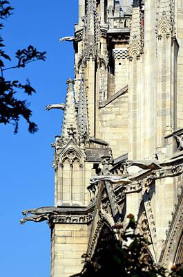 Photograph - Gargoyles Of Notre Dame De Paris by Carla Parris